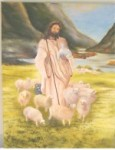 The Good Shepherd cares for His Sheep